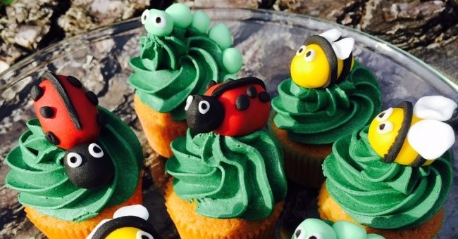 Siucra Mini Bug Buns