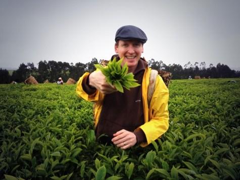 Oscar Woolley Tanzania Suki Tea
