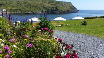 The Ultimate Guide to Glamping in Ireland Chléire Haven