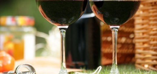 Summer Tannins: Fruity Red Wines to Enjoy on a Sunny Day