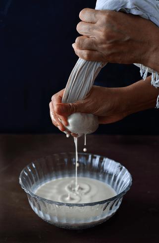 horchata tigernut milk