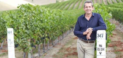 Patrick Materman, Brancott Estate's Chief Winemaker