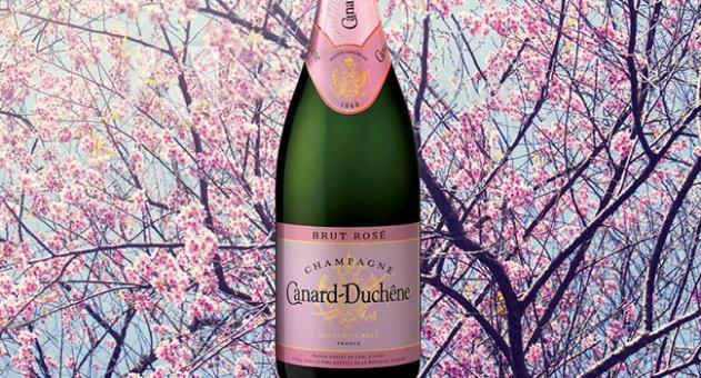 Canard Duchene Rose - Wine of the Week from O'Briens