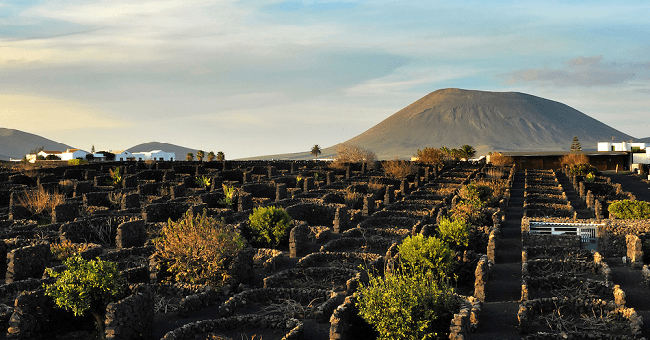 A Song of Rocks and Fire: Epic Volcanic Soil Wines to Try Now