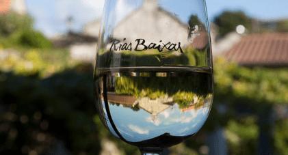 Experience an Exclusive Taste of Rias Baixas Dublin Albarino Wine and Tapas Trail