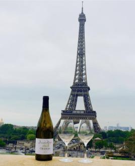 Burgundy Wines by Liam