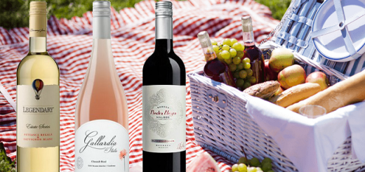 Three Wines to Discover this Season from the Febvre Wines Summer Selection