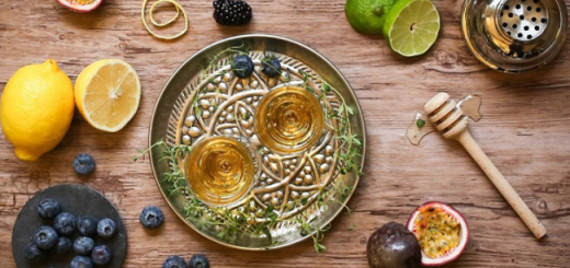 Viking Drinks Around the World with Aquavit and Craft Beers