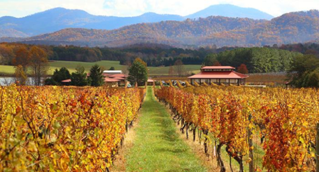 Virginia is for Wine Lovers: A Road Trip Across Virginia Wine Country