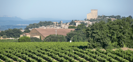 Châteauneuf-du-Nope: Scandal Over Rhone Valley Fraud Sparks International Outrage