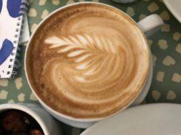 coffee shells cafe