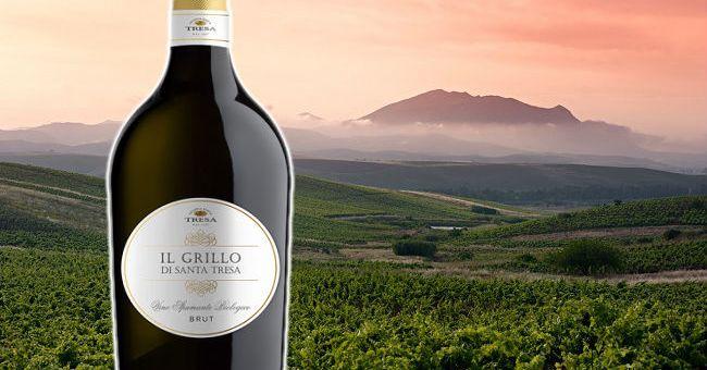 Il Grillo di Santa Tresa Spumante - Wine of the Week from O'Briens Wine