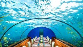 maldives4