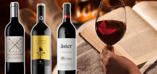 Three Big Red Wines to Cosy Up on this Chilly Weekend