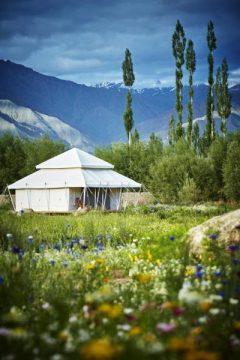 himalaya camping4