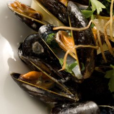 ely-wine-bar-mussels