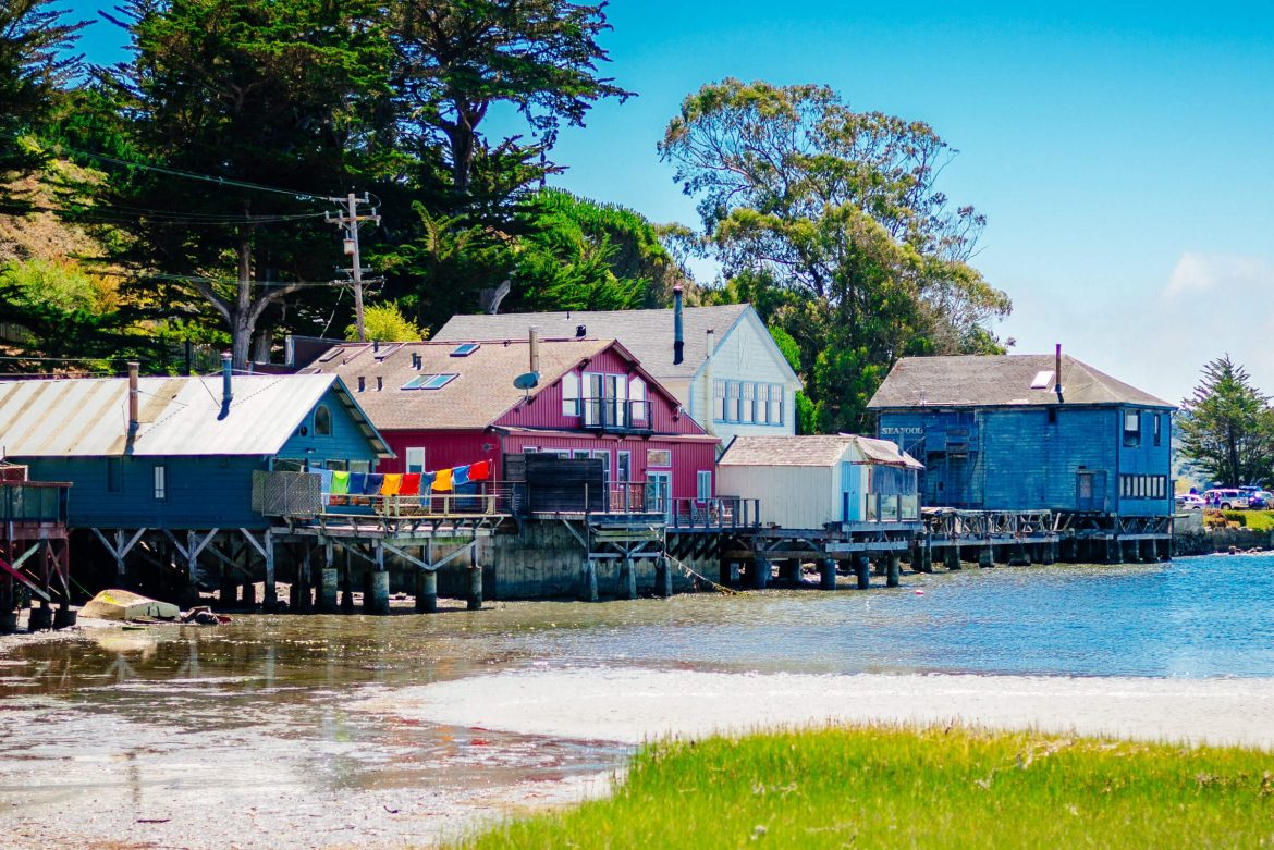 Houses from the view at Hog Island Oyster Farm in Marshall, Ca - Tamales Bay