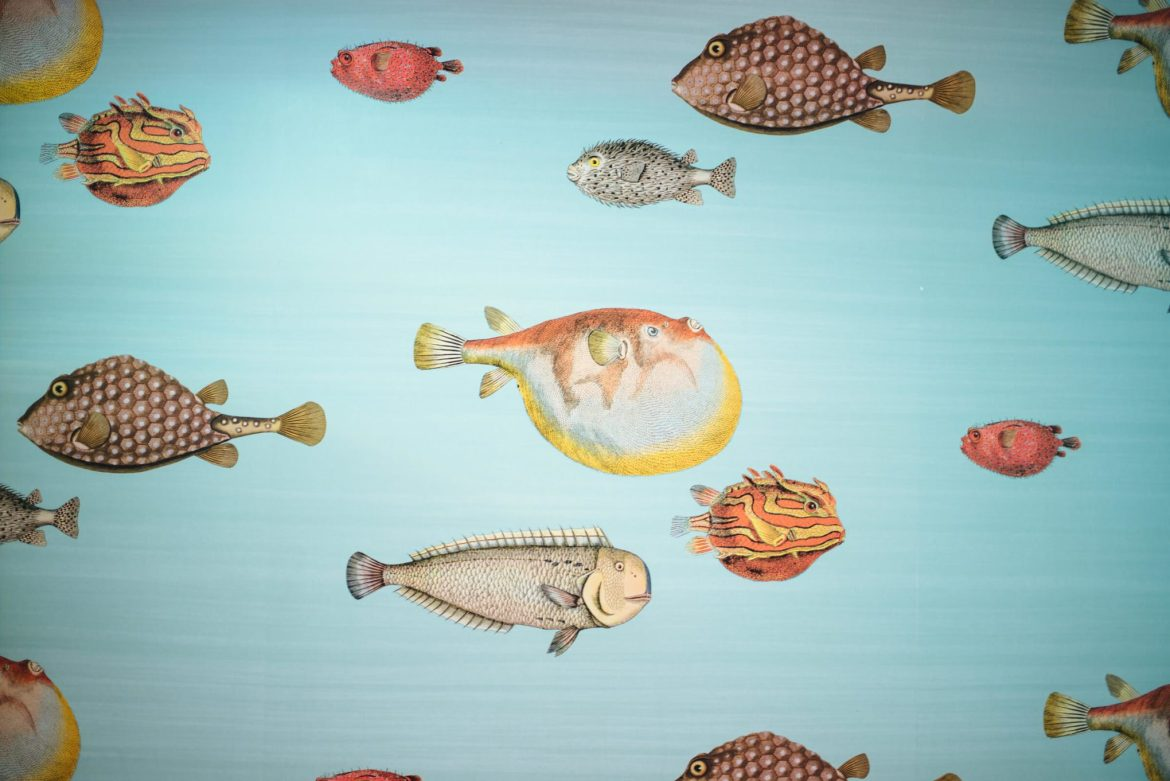 Underwater Fish Wallpaper inspired by Capri for the bathroom at Isaia San Francisco Store, Neapolitan Isaia suits in the historic VC Morris Frank Lloyd Wright San Francisco, The Taste Edit