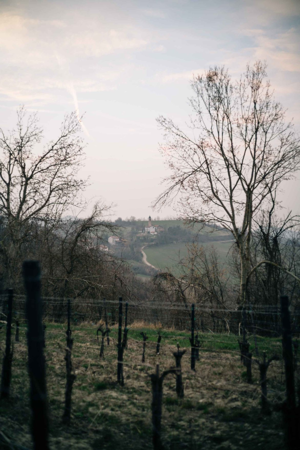 View the vineyards - The Taste Edit, culinary photographers, recommends visiting this magical winery in northern Italy. Castello di Stefanago is near the town of Pavia in Lombardy. Winemaker and owner Giacomo Baruffaldi gives us a tour of the winery where they make Baruffaldi natural wines.