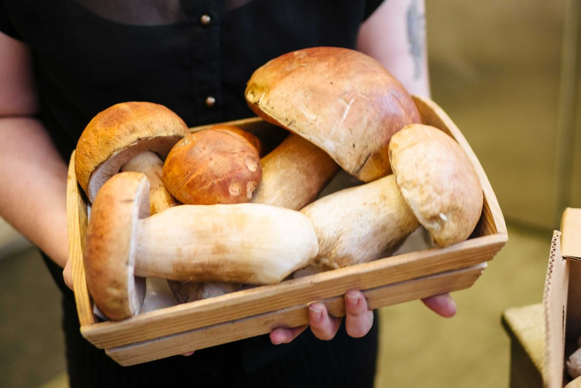 Find giant porcini mushrooms and other unique mushrooms at far west fungi in the ferry building in San Francisco
