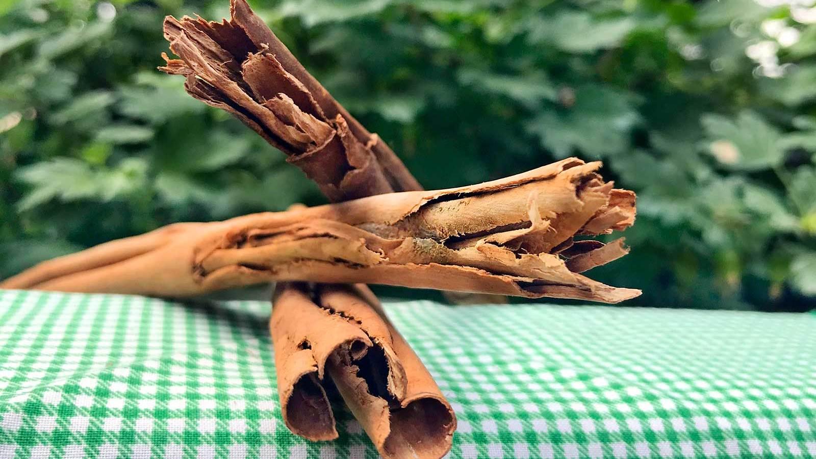 Sri Lanka | Ceylon cinnamon