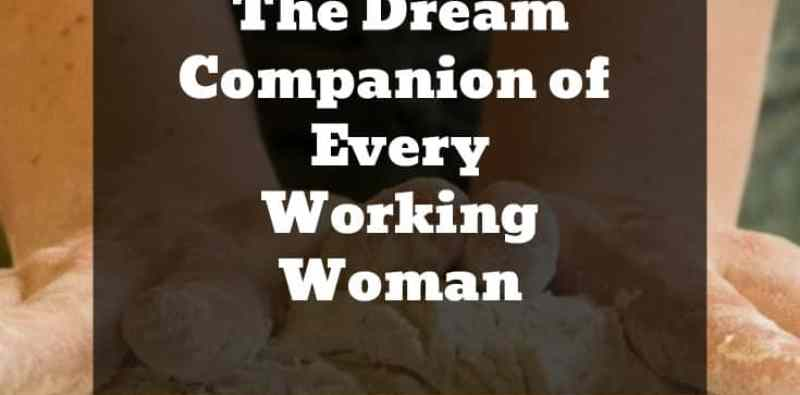 Atta Maker: The Dream of Every Working Woman