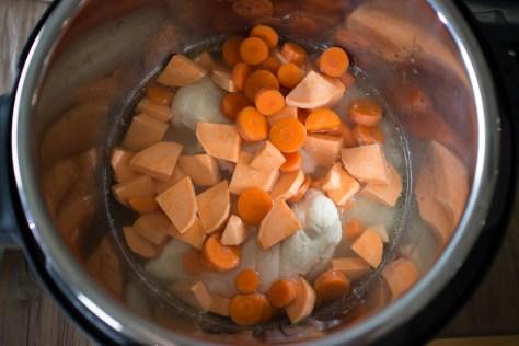 Healthy Dog Food Pressure Cooker