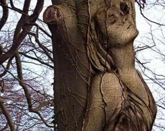 Whispers in the Trees. {Poetry}