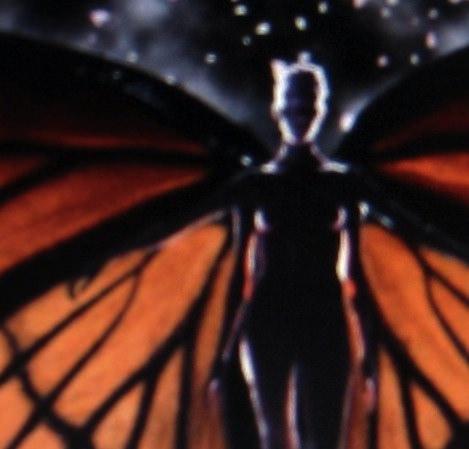 glory (1998)  butterfly woman