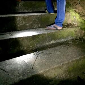 Our guide, in his traditional Sri Lankan shoes, climbing Sri Pada (Adam's Peak)