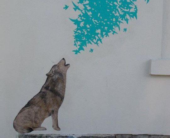 wolf howling birds street art