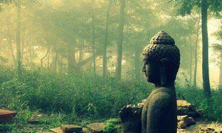 Walking the Lone Buddha Path