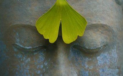 Shantideva on Mindfulness {The Eightfold Path}