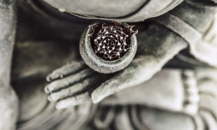 The Fifth Precept: Meditation is Not About Getting High (and Why I Don't)