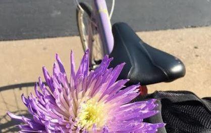 2018 Biking (Anti-)Manifesto