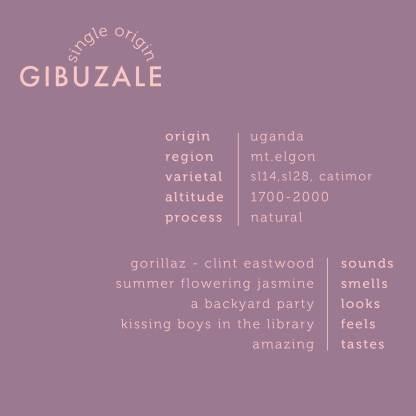 gibuzale_square