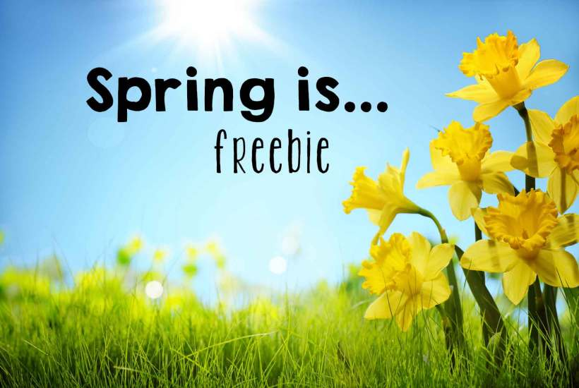 spring is