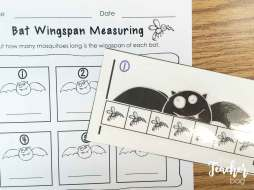 Bat mosquito nonstandard measuring