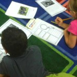 A Close Read of Rain Forest Animals