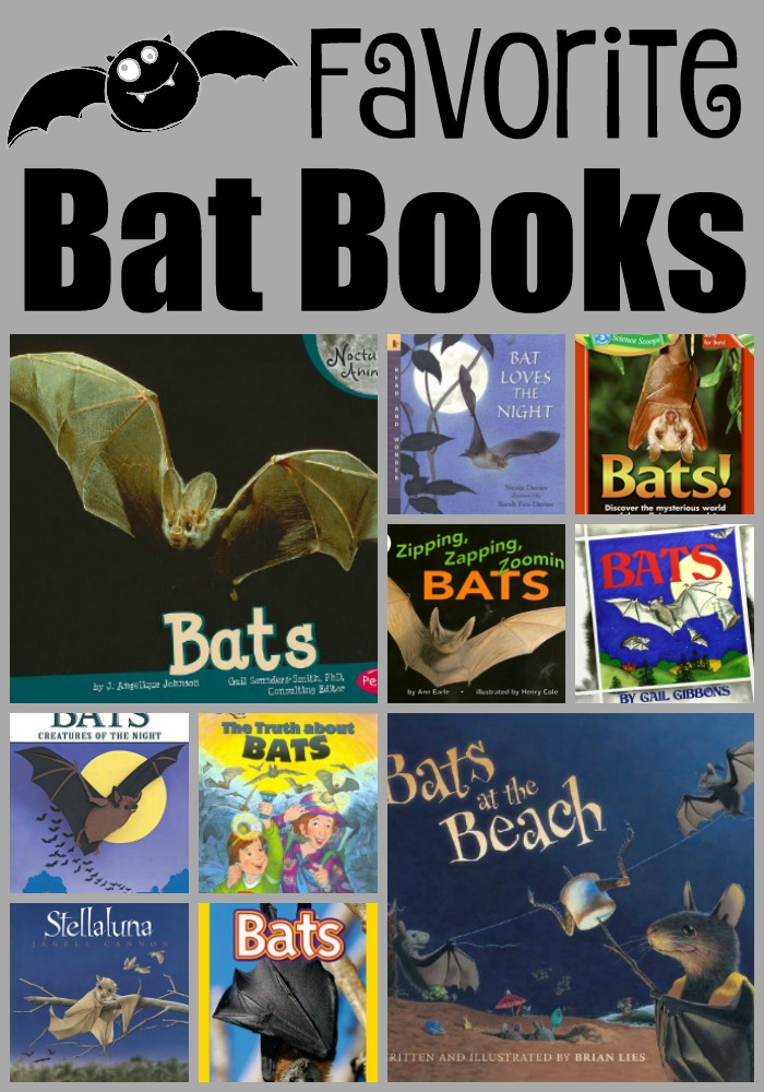 Favorite bat books