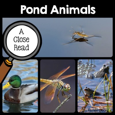 pond-animals-close-read