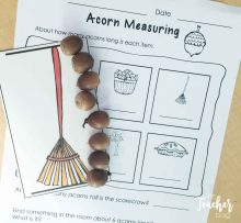 fall-acorn-measuring