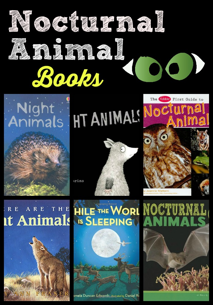 nocturnal animal books colllage