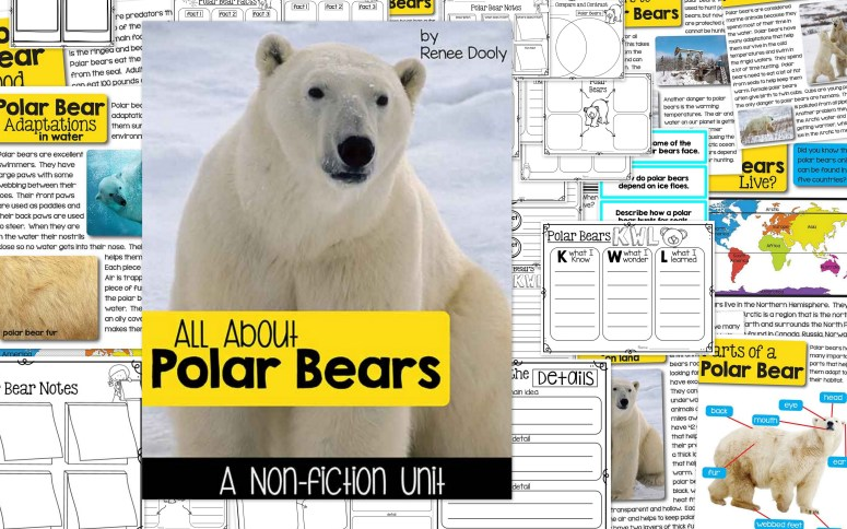 polar-bear-nonfiction-collage