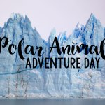 Polar Animal Adventure Day