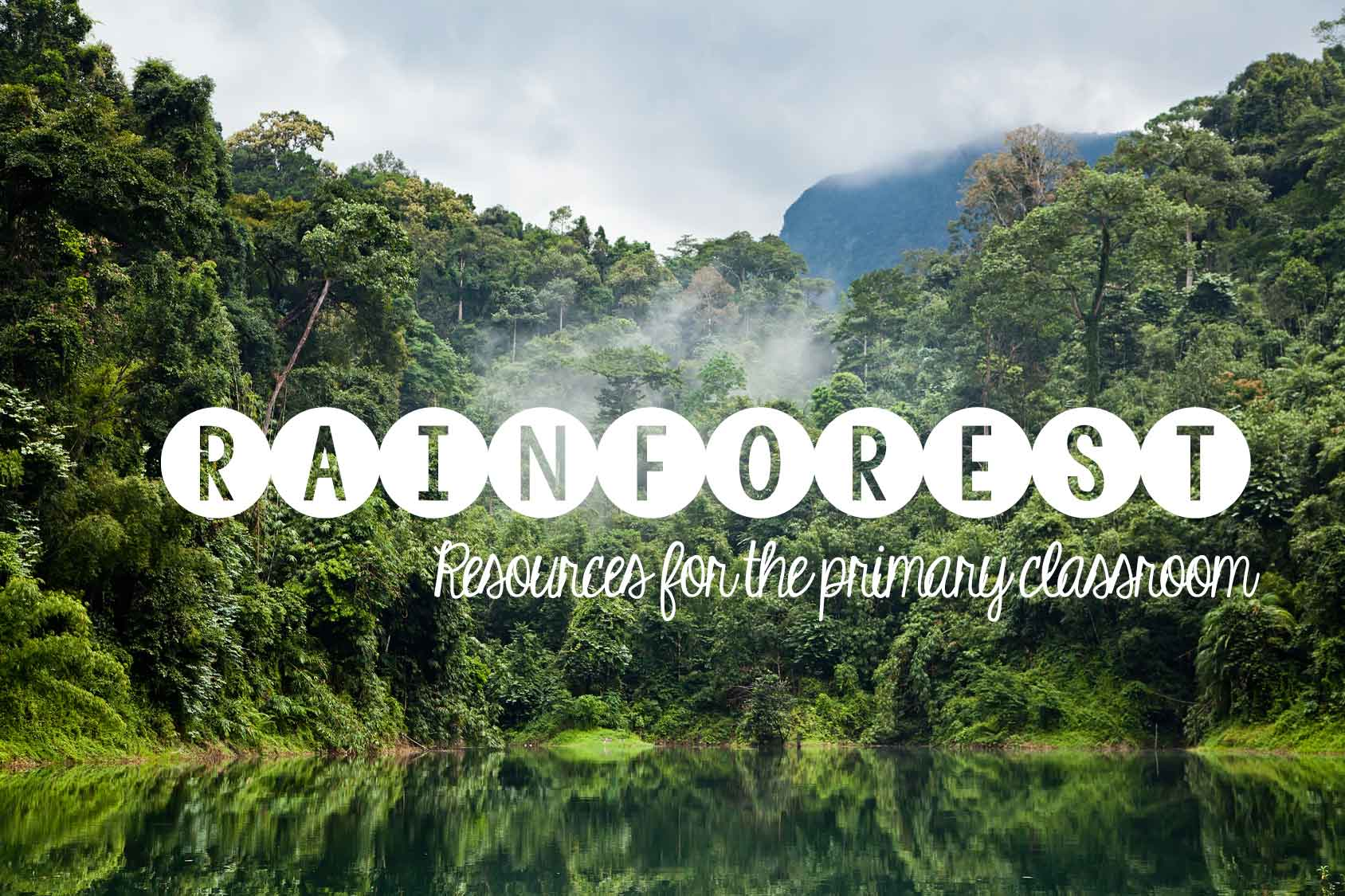 rainforest-resources