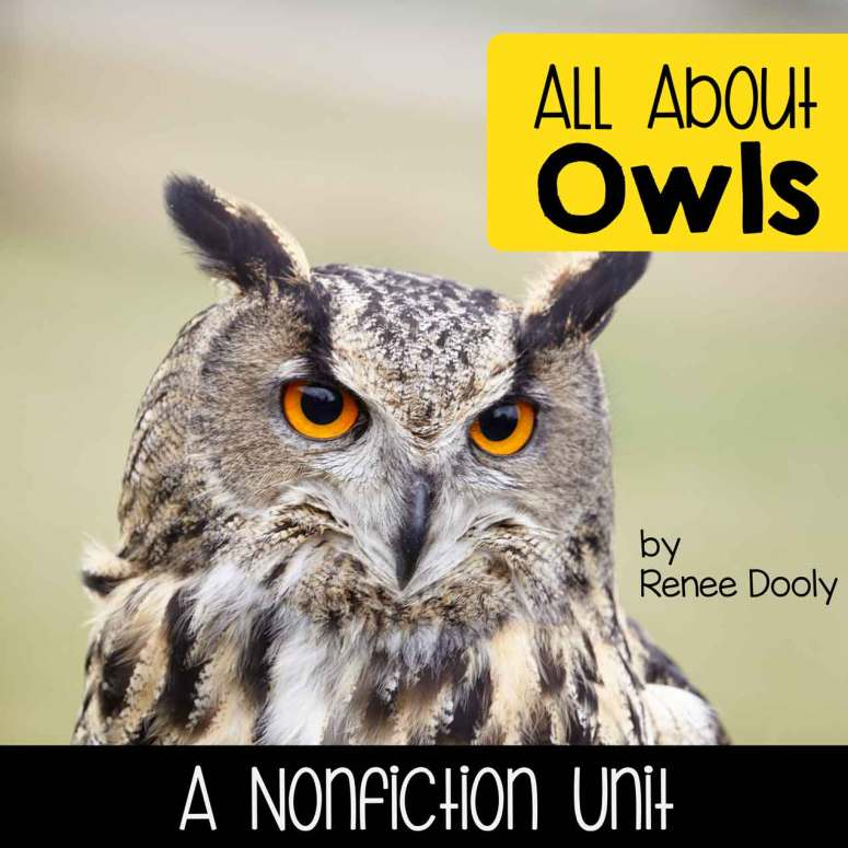 Owls nonfiction unit