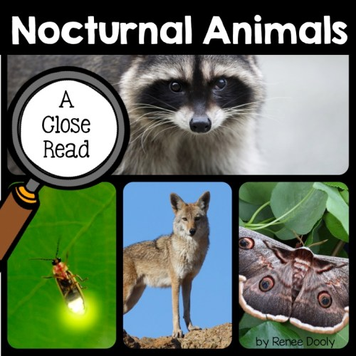 nocturnal animal close reads