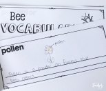 bee vocabulary book