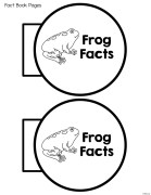 frog interactive notebook